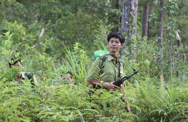 Kiểm lâm tuần tra giữ rừng