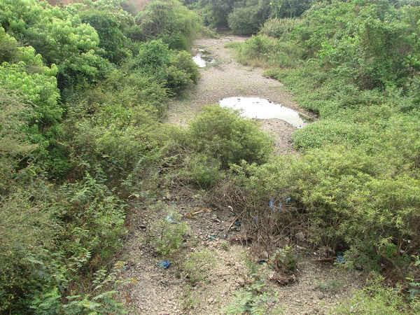 Lượng nước mặt trên các sông, suối cùng với lượng nước ngầm suy giảm mạnh.