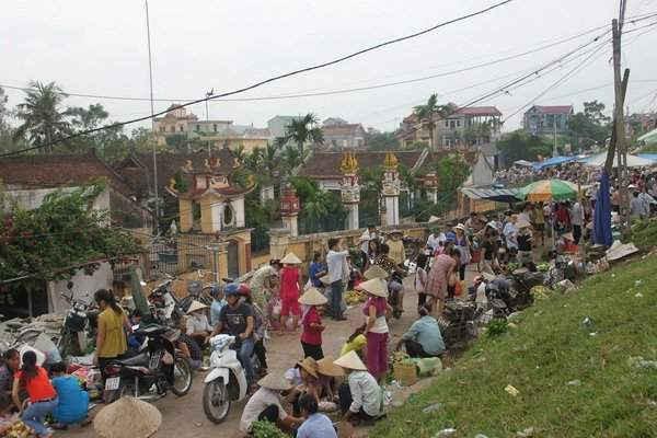Tết Độc lập ở xã Phú Cường. Người dân xã Phú Cường có truyền thống gói bánh chưng ăn Tết Độc lập