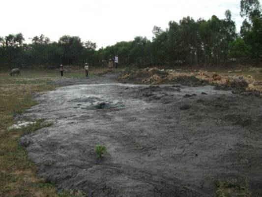 Hình ảnh ô nhiễm môi trường của trại lợn giống Thái Dương
