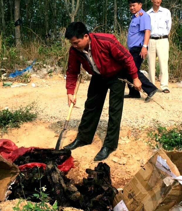 Ảnh buổi tổ chức thiêu hủy 30 cá thể voọc chà vá (2)