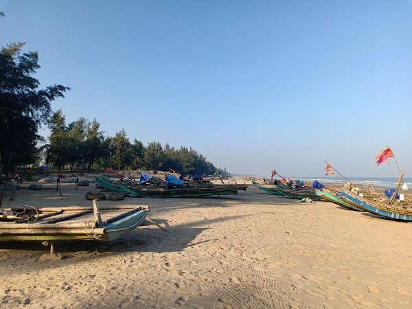 Rừng phòng hộ trên thực tế vẫn còn rất nhiều tại xã Quảng Lợi, huyện Quảng Xương nhưng đã bị xóa sổ trên giấy tờ.