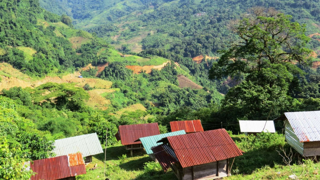 Việc hỗ trợ trồng rừng gỗ lớn và cấp chứng chỉ quản lý rừng bền vững sẽ được thực hiện tại 12 huyện miền núi của Quảng Nam