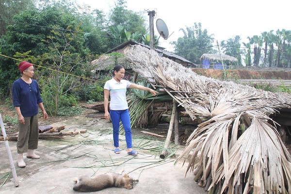 Gia đình chị Chín đã dỡ nhà sau 10 ngày nhận tiền đền bù, sau nhiều năm dự án vẫn chưa lấy đất để triển khai dự án