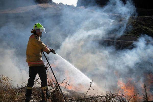 Lính cứu hỏa của Lực lượng phòng vệ New Zealand cố gắng dập tắt đám cháy rừng ở Richmond gần Nelson, Đảo Nam New Zealand vào ngày /2/2019. Ảnh: Chad Sharman / Lực lượng phòng vệ New Zealand