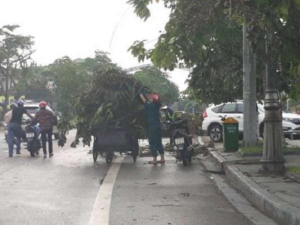 Giá dịch vụ thu gom, vận chuyển, xử lý rác thải sinh hoạt trên địa bàn tỉnh Nghệ An được điều chỉnh tăng nhằm giảm bớt gánh nặng cho ngân sách Nhà nước