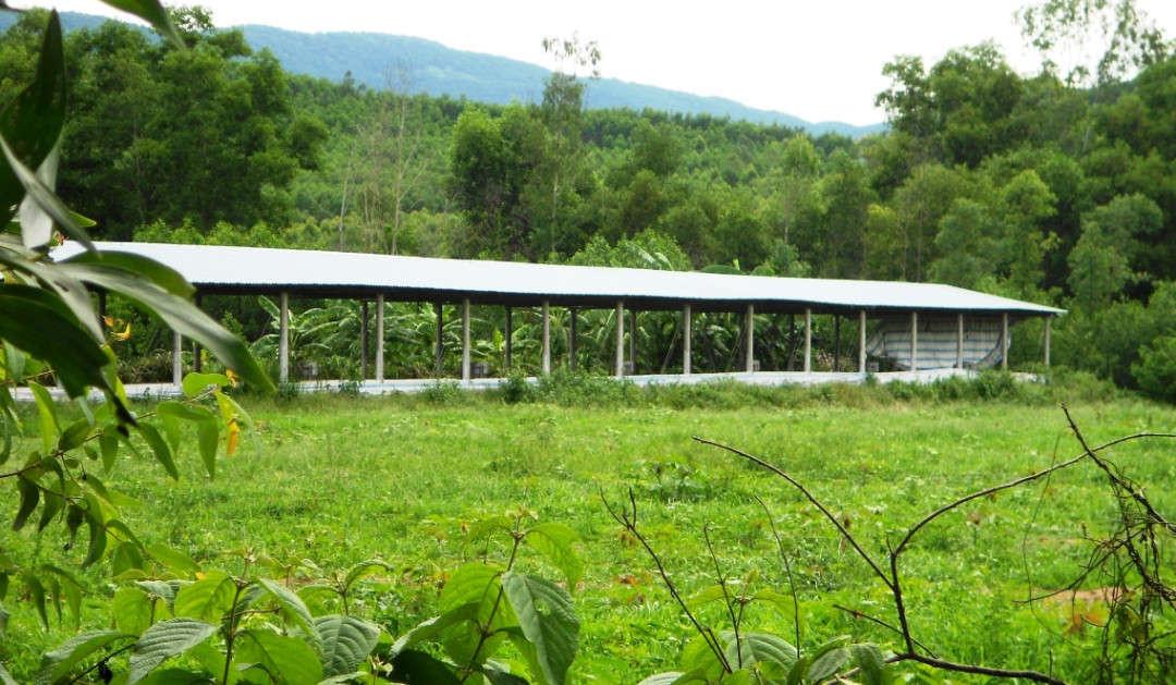 41 trang trại
