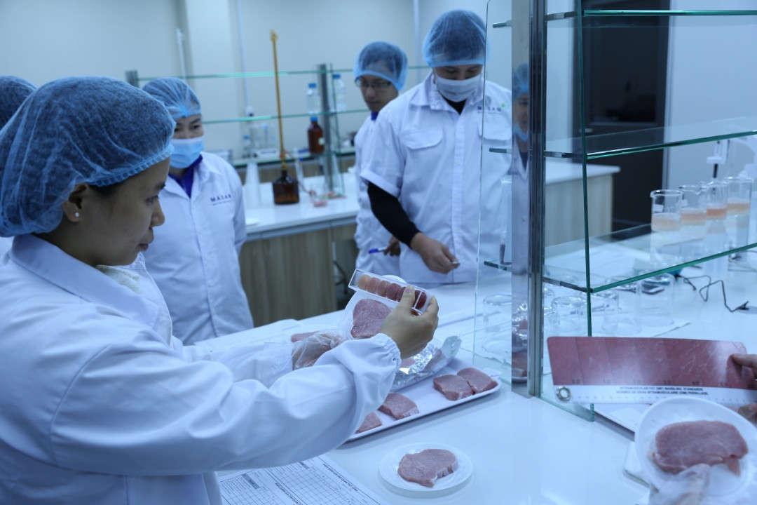 IMG 5529 kiểm định chất lượng thịt