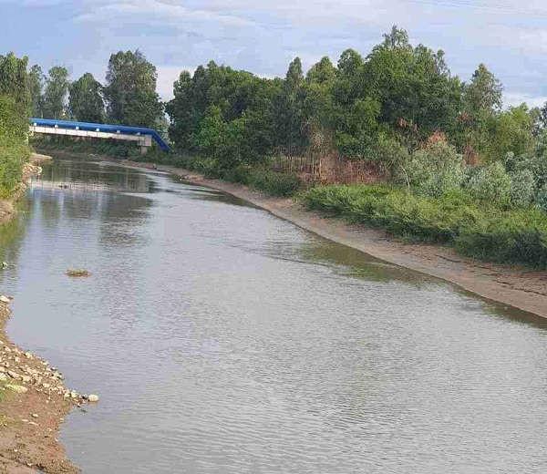 Sông Đào, Nơi đang xảy ra tranh cãi về chất lượng nước có bị ô nhiễm hay không