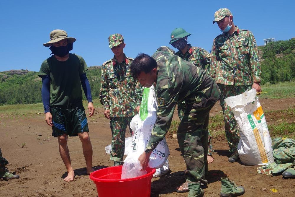 Quảng Ngãi: Thả cá tái tạo nguồn lợi thuỷ sản tại đảo Lý Sơn