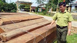 Bắt Trạm trưởng bảo vệ rừng Cà Nhông vì tội nhận hối lộ