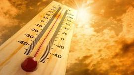 Tích cực chuẩn bị xây dựng khung Báo cáo Đánh giá lần thứ 6 của IPCC
