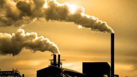 Sai phạm về môi trường: Sẽ có chế tài mạnh