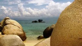 Không cắt giảm đất Khu bảo tồn biển Hòn Cau để phục vụ nhiệt điện