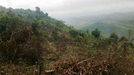 Quảng Bình: Kỷ luật 2 Chủ tịch xã để xảy tình trạng phá rừng đầu nguồn Khe Si