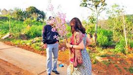 Bình Thuận: Nữ phó giám đốc bẻ hoa bị kỷ luật Đảng