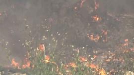 Hội An: Bãi rác Cẩm Hà liệu có thực sự tự bốc cháy?