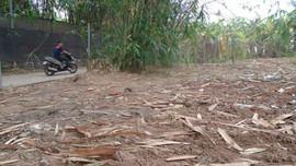 Sở Xây dựng Hà Nội phản hồi bài báo rác thải được tập kết trên đất nông nghiệp tại phường Nhật Tân