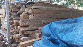 Phá rừng ở Yên Bái, kiểm lâm Văn Chấn nói 'tận thu' chứ không 'khai thác'