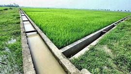 Quy định hỗ trợ phát triển thủy lợi nhỏ và tưới tiết kiệm nước