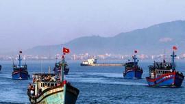 Quảng Ngãi: Cần có chế tài mạnh để hạn chế tình trạng ngư dân khai thác hải sản bất hợp pháp