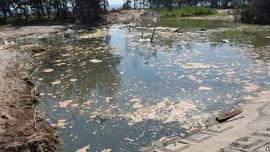 Hà Tĩnh: Xử phạt 435 triệu đồng doanh nghiệp nuôi tôm gây ô nhiễm môi trường