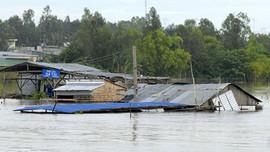 Đồng bằng sông Cửu Long chủ động ứng phó lũ lớn