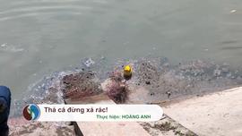 Thả cá đừng xả rác