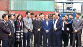 Các Sở TN&MT không trực tiếp thực hiện việc kiểm tra chất lượng phế liệu nhập khẩu