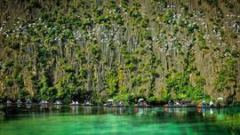 Ninh Bình:Giữ nhịp đập Ramsar