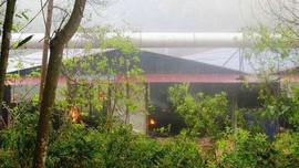 """Điện Biên: Nhà máy than cốc gây ô nhiễm môi trường """"bủa vây"""" khu dân cư"""