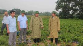 Cam Lộ sẽ trở thành huyện đầu tiên tại Quảng Trị đạt chuẩn nông thôn mới