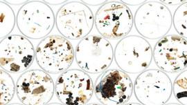 Hạt vi nhựa gây mối lo lắng lớn trên thế giới