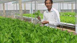 Nam Trung bộ: Thúc đẩy nông nghiệp công nghệ cao thích ứng với BĐKH