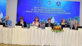 Đề xuất Côn Đảo trở thành thành viên mạng lưới các Khu bảo tồn rùa biển IOSEA