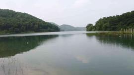 Sau vụ nước nhiễm dầu, nghiên cứu lấy nước sông Đà vào thẳng nhà máy