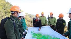 Diễn tập phòng cháy chữa cháy rừng cấp độ 2 tại Vườn quốc gia Hoàng Liên