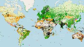Công cụ web mới hỗ trợ giám sát chất lượng quan sát khí tượng toàn cầu