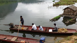 Vụ cá chết bất thường trên sông Mã: Phát hiện việc xả thải của các Công ty