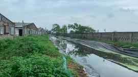 Vụ trang trại nuôi lợn gia công cho  Công ty C.P: Giám đốc Công ty Đông Xuân thừa nhận gây ô nhiễm