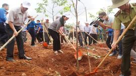 Đắk Nông tổ chức trồng cây xanh kỷ niệm 130 năm Ngày sinh Chủ tịch Hồ Chí Minh