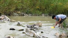 Đà Nẵng kiến nghị Bộ TN&MT đánh giá sức chịu tải các nguồn thải sông Vu Gia - Thu Bồn