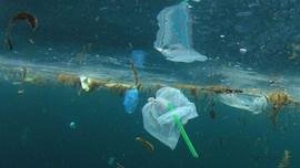 Hy Lạp soạn thảo dự luật cấm sử dụng nhựa dùng một lần