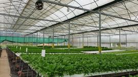 Đẩy mạnh công tác tưới tiên tiến, tiết kiệm nước cho cây trồng khô cạn