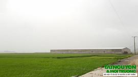 Vụ Công ty Tiên Sơn sai phạm về đất đai, xây dựng: Kiểm điểm trách nhiệm Chủ tịch UBND xã Quý Lộc