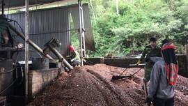Sơn La: Kiểm tra, giám sát môi trường với các cơ sở nông sản, chăn nuôi
