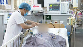 Bộ Y tế ban hành hướng dẫn tạm thời chẩn đoán và điều trị ngộ độc botulinum