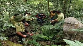 Tăng cường công tác bảo vệ rừng Khu Bảo tồn thiên nhiên Pù Luông
