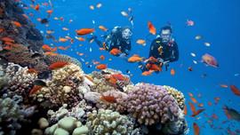 Du lịch mùa dịch, vi vu Phú Quốc là an toàn số 1