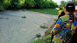 Vĩnh Bảo - Hải Phòng: Người dân khốn khổ vì nhiều trại lợn gây ô nhiễm